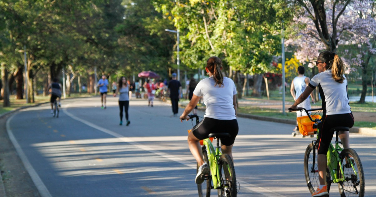 Parque do Ibirapuera - Passeio de bike