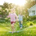 Casas com quintal: cresce a procura por imóveis maiores