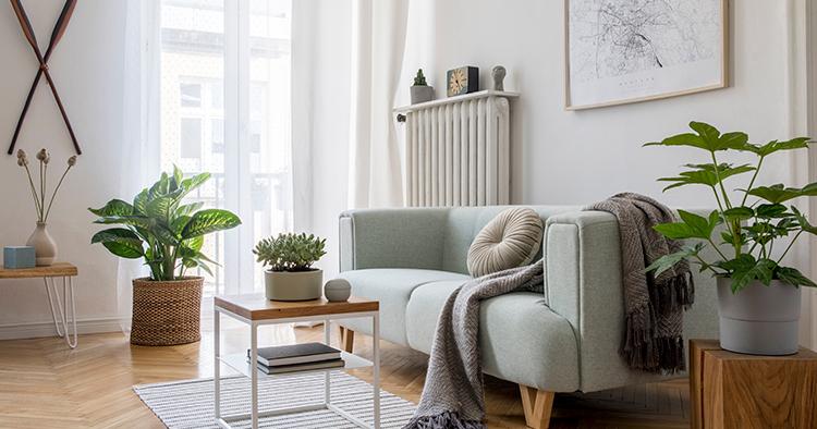 apartamento-para-alugar-em-limeira